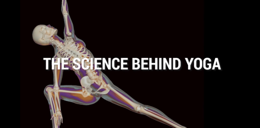 VIDEO – The Science Behind Yoga